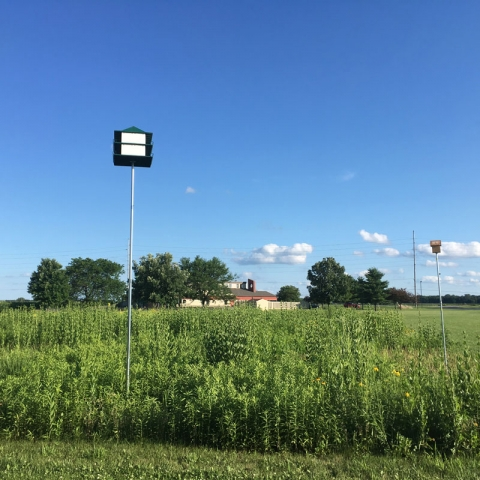 ALUUC prairie purple martin house